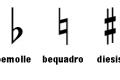 Tono e semitono - alterazioni - suoni omofoni